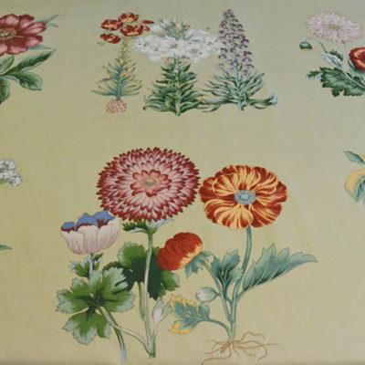 Sage - Floral Cotton
