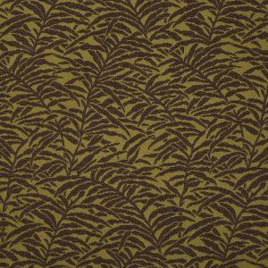 Moss Fern - Cotton