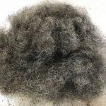 horse hair - upholstery supplies