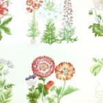 bed cotton upholstery fabric