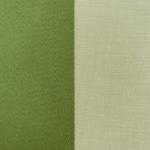 Royal Stripe Leaf 2